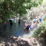 כל המשפחות טובלות בנהר